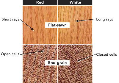 Red Oak Vs White Key Differences Fine Homebuilding