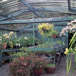 Greenhouses and Potting Sheds - Fine Homebuilding on hvac house plans, hampton house plans, garden house plans,